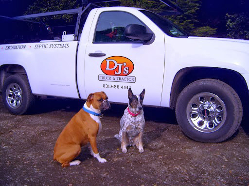 truck-dogs